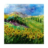 Provence 6641 Photographic Print by  Ledent