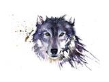 Snow Wolf Giclée-tryk af Sarah Stokes