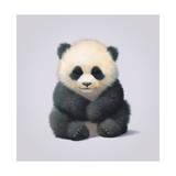 Panda Giclée-tryk af John Butler Art