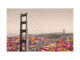 San Francisco Waters Giclee Print by Bianca Green