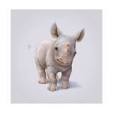 Rhino Wydruk giclee autor John Butler Art