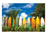 Surfer's Paradise - Hawaii Posters