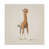 Giraffe Lámina giclée por John Butler Art