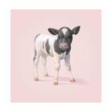 Vaca, em inglês Impressão giclée por John Butler Art