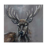 Stag Giclee Print by Louise Brown