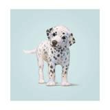 Dog Giclée-tryk af John Butler Art