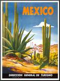 Cacti, Mexico Mounted Print