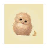 Owl Giclee Print by John Butler