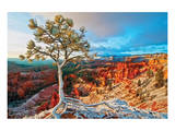 Grand Canyon - Winter Sunrise Print