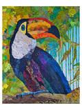 Toucan 2 Prints