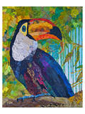 Toucan 2 Print