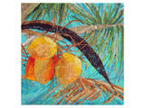 Coconut Palms Prints