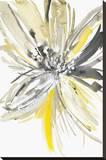 A Sunny Bloom Trykk på strukket lerret av Rebecca Meyers