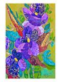 Violets Prints