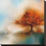 Morning Mist & Maple I Stretched Canvas Print by J.P. Prior