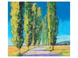 Poplars Normandy II Poster