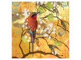 Scarlet Bee Eater Posters