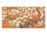 Magnolia Branches Print