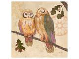 Memosa Owl Art