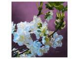 Blossoms 08 Posters by Kurt Novak