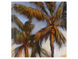 Stricktly Palms 04 Prints by Kurt Novak