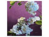 Blossoms 07 Posters by Kurt Novak