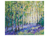 Bluebell Woodsiv Prints