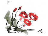 Red Morning Glory Prints