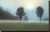 Two Trees & Sunburst Stretched Canvas Print by Monte Nagler