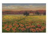 Poppy Path To Home Art