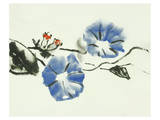 Heavenly Blue Morning Glory Posters