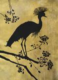 Golden Crowned Crane Art by Filippo Ioco