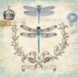 Victorian Dragonflies Prints by Christopher James
