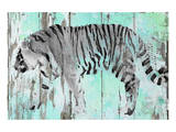 Siberian Tiger Posters