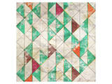 Geometric Color Shape XIII Art