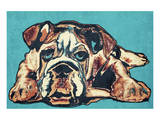 Cute Bulldog Prints