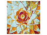 Succulent Blossom Prints
