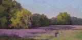 Plein Air Wild Lavender Art by Jill Schultz McGannon