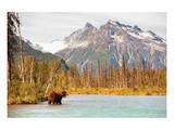 Natural Splendors Alaska IV Print