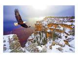 Natural Splendors Alaska V Poster