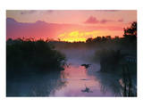 Everglades National Park Prints