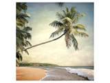 Hawaiian Memories VI Prints