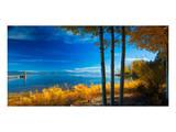 Lake Tahoe X Posters