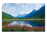 Alaska USA I Posters