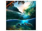Beach Sea and Ocean Schilderij