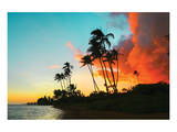 Hawaii Dreaming II HDR Poster
