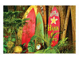 Board in Maui Prints