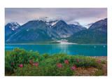 Alaska USA XII Print