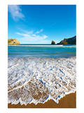New Zealand Coast Wellington Posters