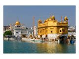 Golden Temple in Amritsar Prints